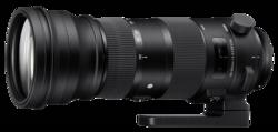 Objetivos para cámaras réflex: Sigma DG 5-6